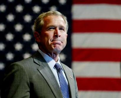 bush4.jpg