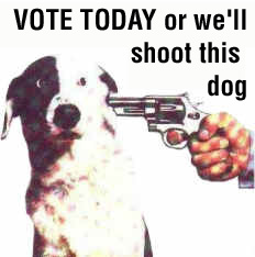 shootdog.jpg