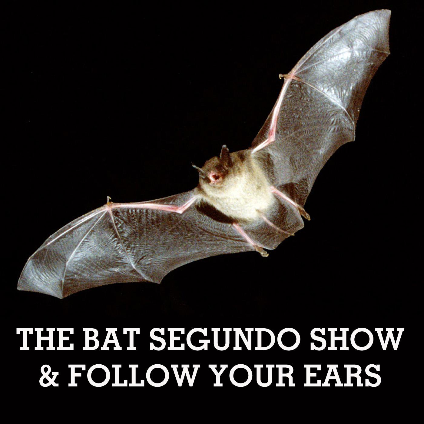 The Bat Segundo Show & Follow Your Ears