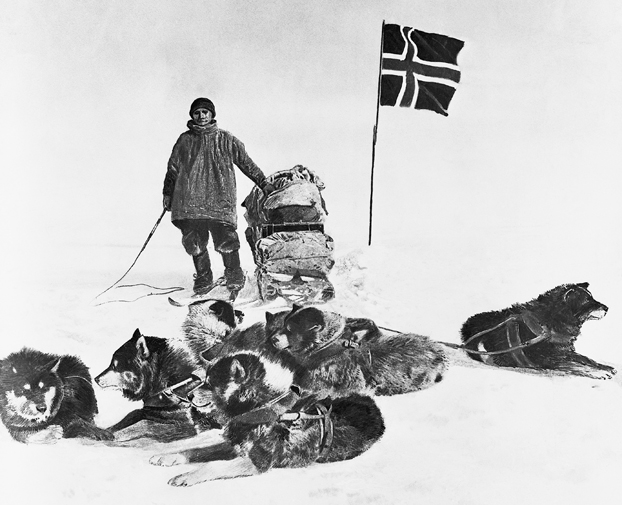 Sled Dogs and Member of Amundsen Expedition